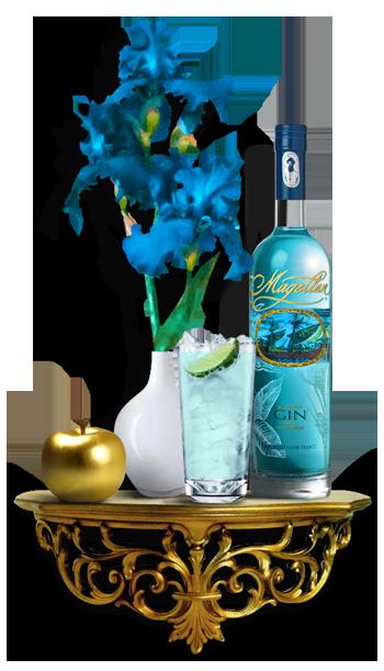 Magellan Gin España